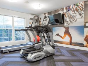 Fitness center with cardio equipment at The Willows apartments for rent