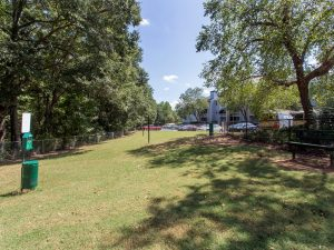 Pet-friendly dog park at The Willows apartments for rent